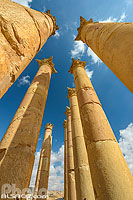 Photo : Colonnes corinthiennes du temple d'Artémis, Cité antique de Jerash, Jordanie
