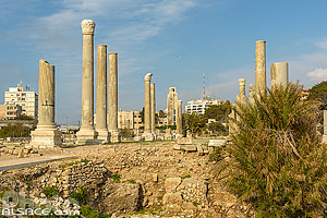 Photo : Basilique thermale, Site d'Al Mina, Ville antique de Tyr, Tyr (Sour), Liban-Sud, Liban, Liban-Sud, Liban