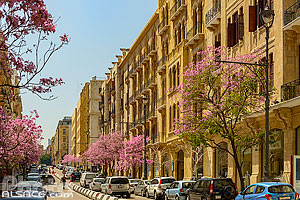 Photo : Rue Al Lenbi dans le centre ville au printemps, Marfaa, Beyrouth, Liban