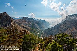Réserve naturelle de la forêt de cèdres de Tannourine (Tannourine Cedars Forest Reserve), Tannourine, Liban-Nord, Liban, Liban-Nord, Liban