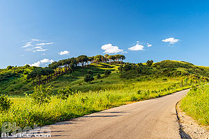 Photos de Mazraat Tamrah en Liban-Sud, Liban
