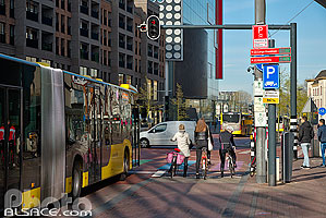 Photo : Bus et cyclistes, Lange Viestraat, Utrecht, Pays-Bas