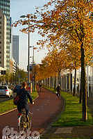 Photo : Piste cyclable, Boompjes, Rotterdam, Zuid-Holland, Pays-Bas