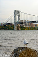 Photo : Pont George Washington au-dessus de l'Hudson River vue depuis les berges de Fort Lee, New Jersey, Etats-Unis