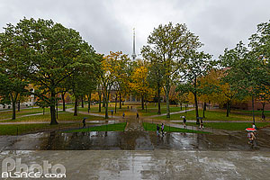 Photo : Parc Harvard Yard sous la pluie, Campus de l'Université de Harvard, Cambridge, Massachusetts, Etats-Unis