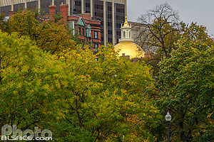 Photo : Boston Common en automne (Boston Common est le plus ancien jardin public des États-Unis), Boston, Massachusetts, Etats-Unis