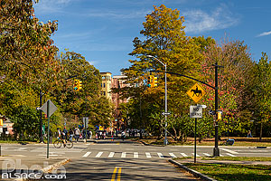 Photo : Prospect Park, Brooklyn, New York, Etats-Unis