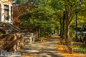 Photo : Lincoln Road en automne, Prospect-Lefferts Gardens Historic District, Brooklyn, New York, Etats-Unis