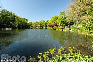 Photo : The Pond, Central Park, Manhattan, New-York, Etats-Unis