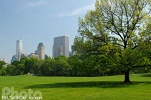 Sheep Meadow, Central Park, Manhattan, New York, Etats-Unis, New York, Etats-Unis
