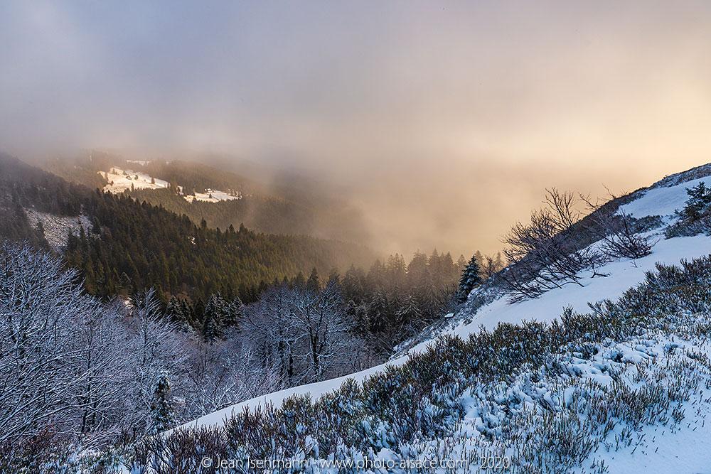 Réserve naturelle de Frankenthal-Missheimle depuis les crêtes en hiver